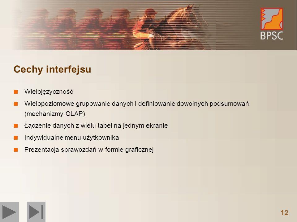 12 Cechy interfejsu Wielojęzyczność Wielopoziomowe grupowanie danych i definiowanie dowolnych podsumowań (mechanizmy OLAP) Łączenie danych z wielu tab
