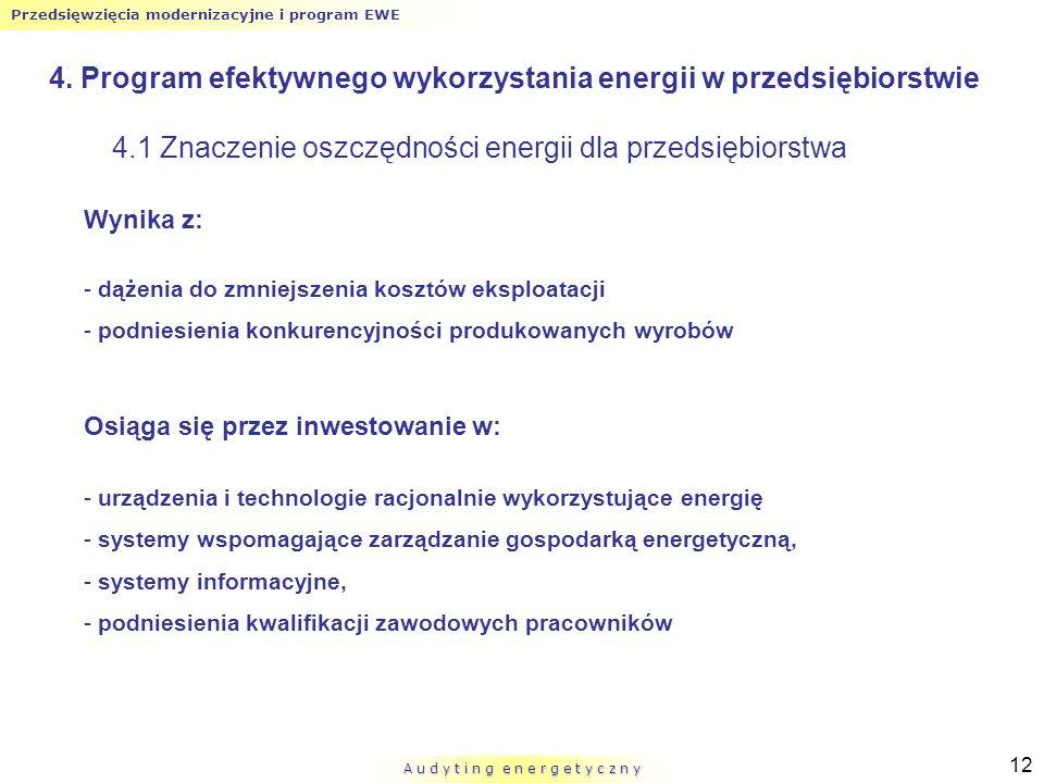 Przedsięwzięcia modernizacyjne i program EWE A u d y t i n g e n e r g e t y c z n y 12 4. Program efektywnego wykorzystania energii w przedsiębiorstw