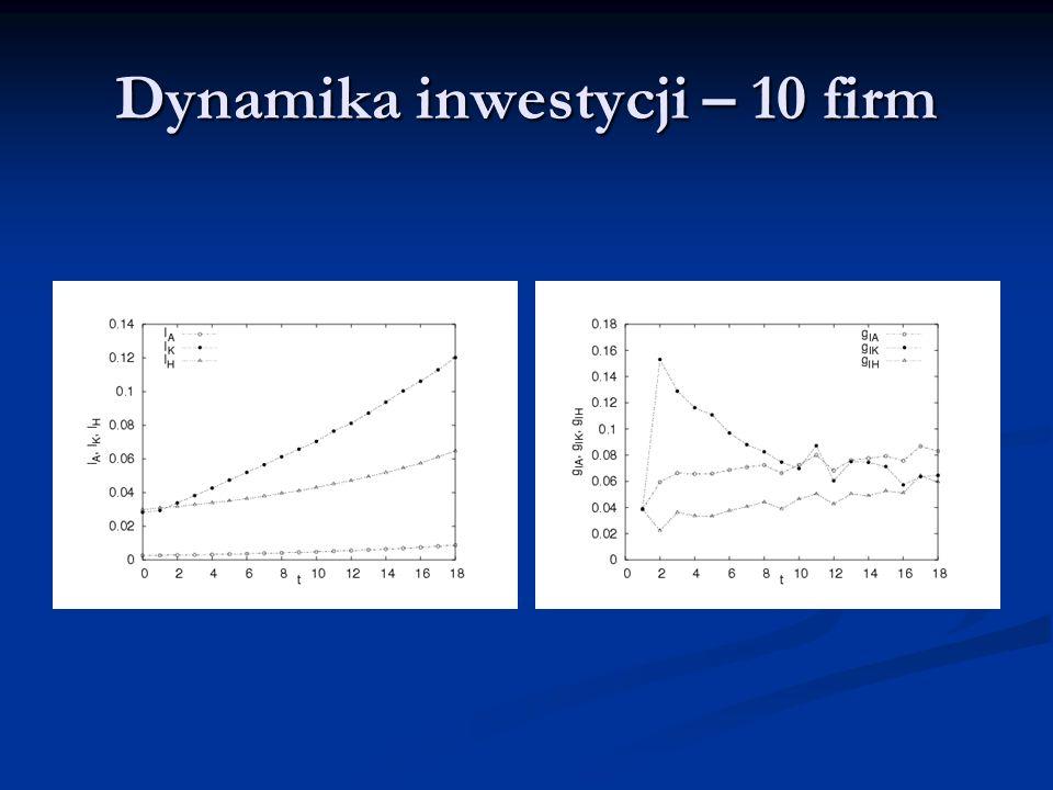 Dynamika inwestycji – 10 firm