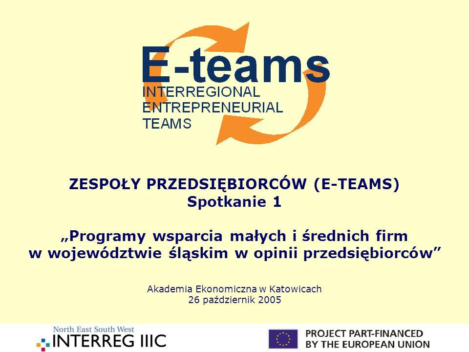 ZESPOŁY PRZEDSIĘBIORCÓW (E-TEAMS) Spotkanie 1 Programy wsparcia małych i średnich firm w województwie śląskim w opinii przedsiębiorców Akademia Ekonom