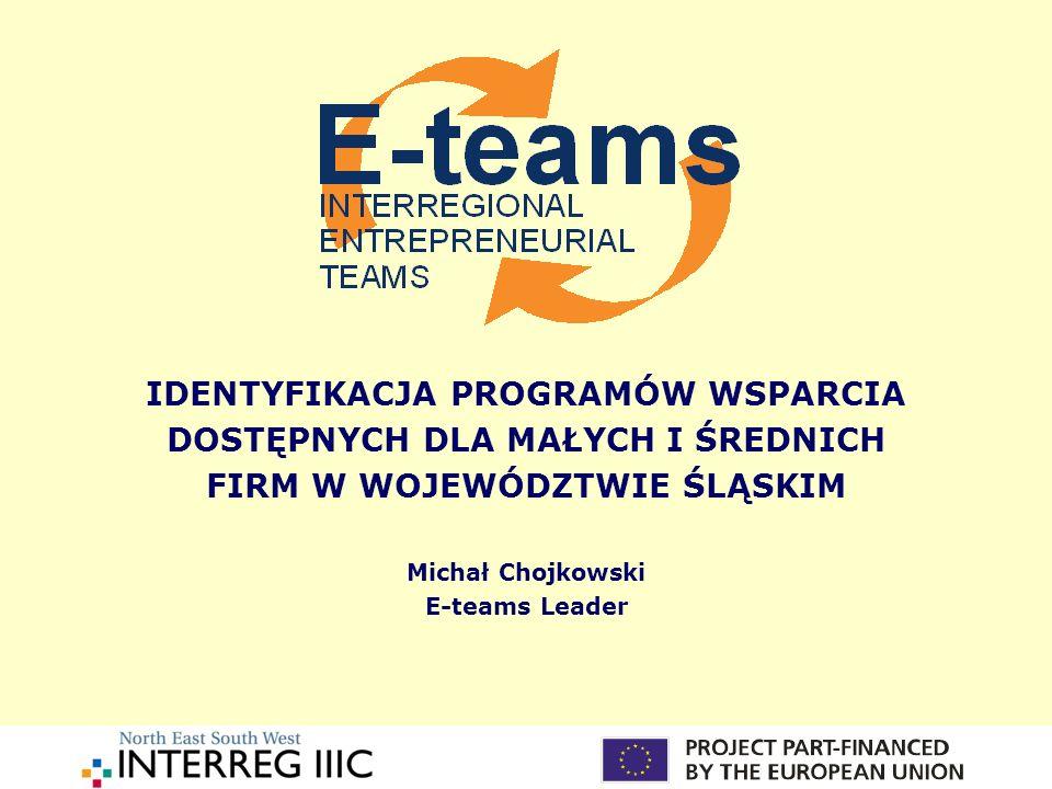 Programy wsparcia małych i średnich firm Wsparcie z funduszy strukturalnych UE Wsparcie z programu Phare 2003 Wsparcie poprzez lokalne i regionalne fundusze pożyczkowe, poręczeniowe oraz inne instrumenty finansowe Wsparcie poprzez szkolenia i doradztwo