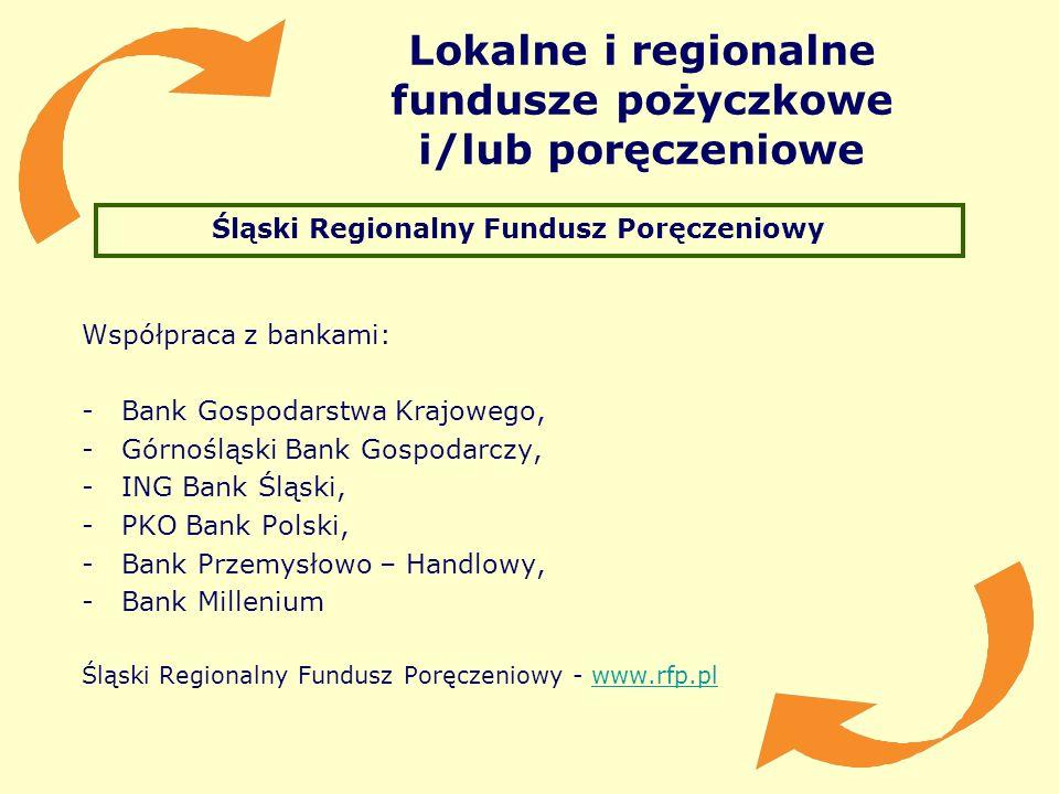Lokalne i regionalne fundusze pożyczkowe i/lub poręczeniowe Śląski Regionalny Fundusz Poręczeniowy Współpraca z bankami: -Bank Gospodarstwa Krajowego,