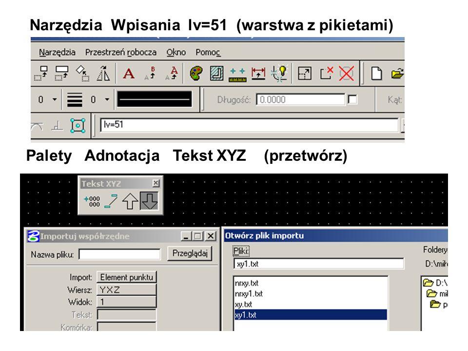 Palety Adnotacja Tekst XYZ (przetwórz) Narzędzia Wpisania lv=51 (warstwa z pikietami)