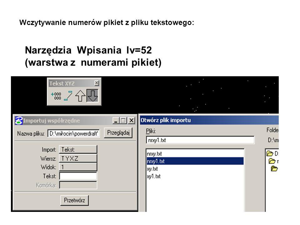 Narzędzia Wpisania lv=52 (warstwa z numerami pikiet) Wczytywanie numerów pikiet z pliku tekstowego: