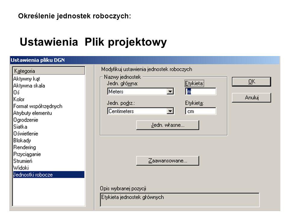 Ustawienia Plik projektowy Określenie jednostek roboczych:
