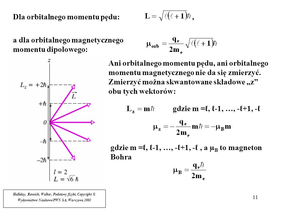 11 Dla orbitalnego momentu pędu:, a dla orbitalnego magnetycznego momentu dipolowego: Ani orbitalnego momentu pędu, ani orbitalnego momentu magnetyczn