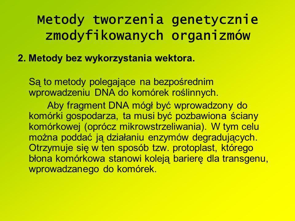 Metody tworzenia genetycznie zmodyfikowanych organizmów 2. Metody bez wykorzystania wektora. Są to metody polegające na bezpośrednim wprowadzeniu DNA