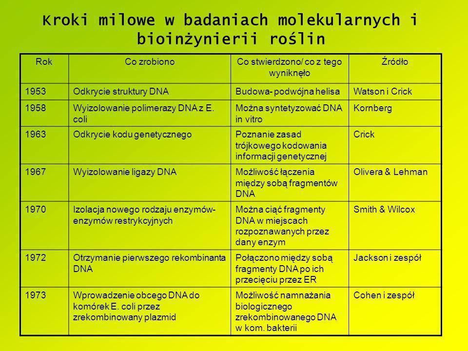 Kroki milowe w badaniach molekularnych i bioinżynierii roślin RokCo zrobionoCo stwierdzono/ co z tego wyniknęło Źródło 1953Odkrycie struktury DNABudow