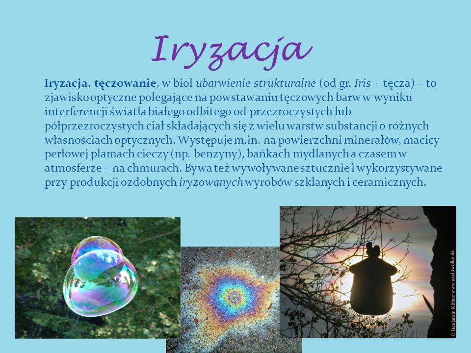 Iryzacja Iryzacja, tęczowanie, w biol ubarwienie strukturalne (od gr. Iris = tęcza) – to zjawisko optyczne polegające na powstawaniu tęczowych barw w
