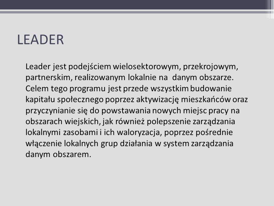 LEADER Leader jest podejściem wielosektorowym, przekrojowym, partnerskim, realizowanym lokalnie na danym obszarze. Celem tego programu jest przede wsz