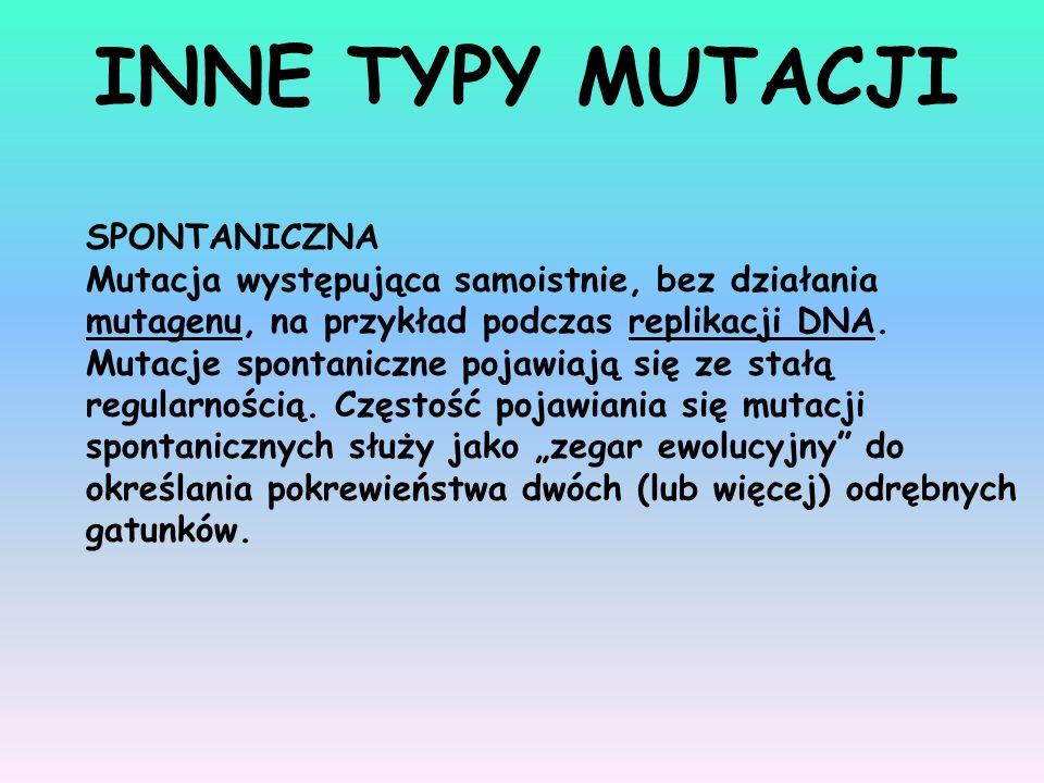 SPONTANICZNA Mutacja występująca samoistnie, bez działania mutagenu, na przykład podczas replikacji DNA. Mutacje spontaniczne pojawiają się ze stałą r