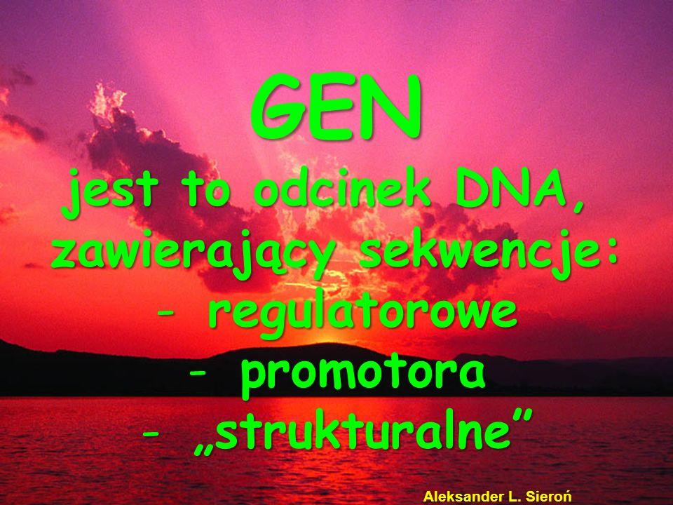 GEN jest to odcinek DNA, zawierający sekwencje: -r-r-r-regulatorowe -p-p-p-promotora -strukturalne Aleksander L. Sieroń