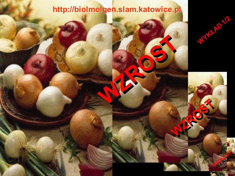 WZROST WYKŁAD 1/2 http://biolmolgen.slam.katowice.pl