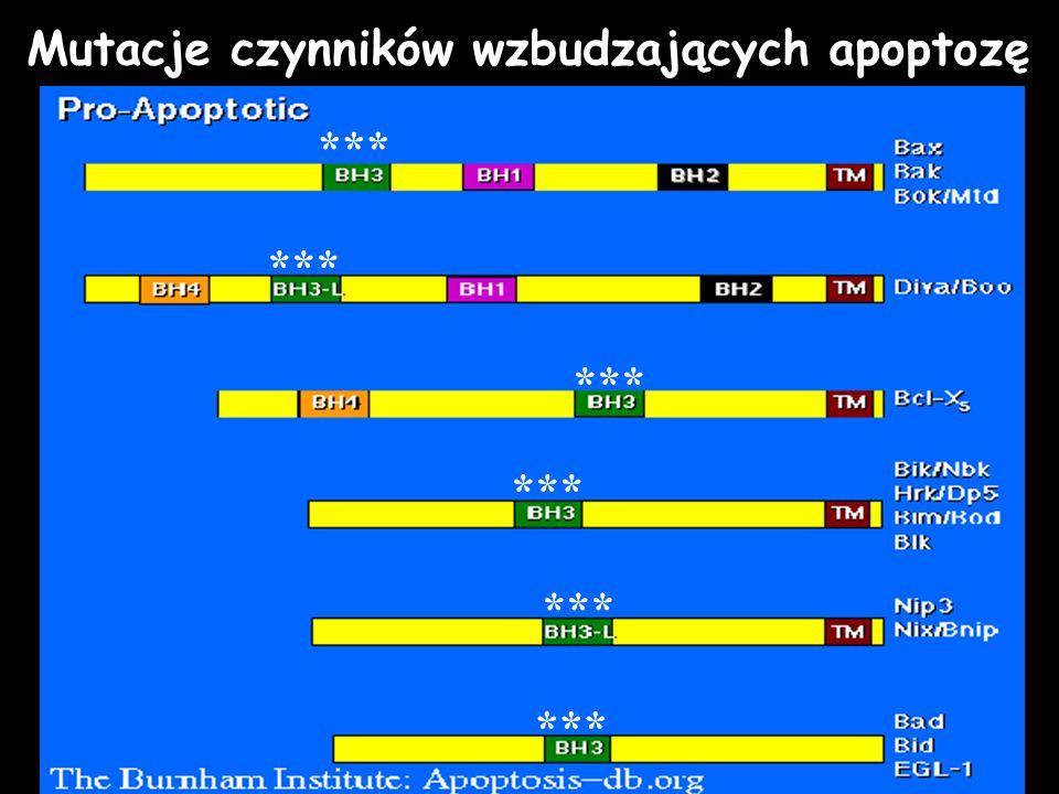 Mutacje czynników wzbudzających apoptozę ***