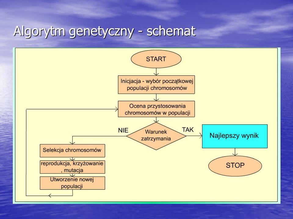 Algorytm genetyczny - schemat