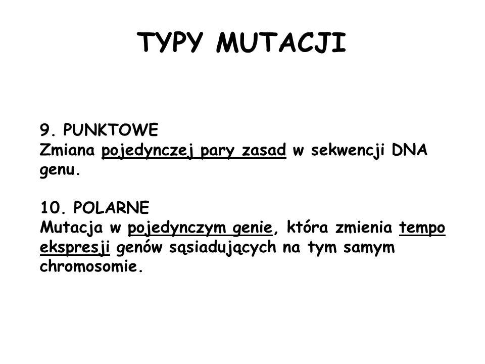 9. PUNKTOWE Zmiana pojedynczej pary zasad w sekwencji DNA genu. 10. POLARNE Mutacja w pojedynczym genie, która zmienia tempo ekspresji genów sąsiadują