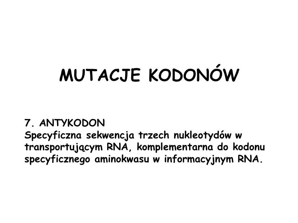 7. ANTYKODON Specyficzna sekwencja trzech nukleotydów w transportującym RNA, komplementarna do kodonu specyficznego aminokwasu w informacyjnym RNA. MU
