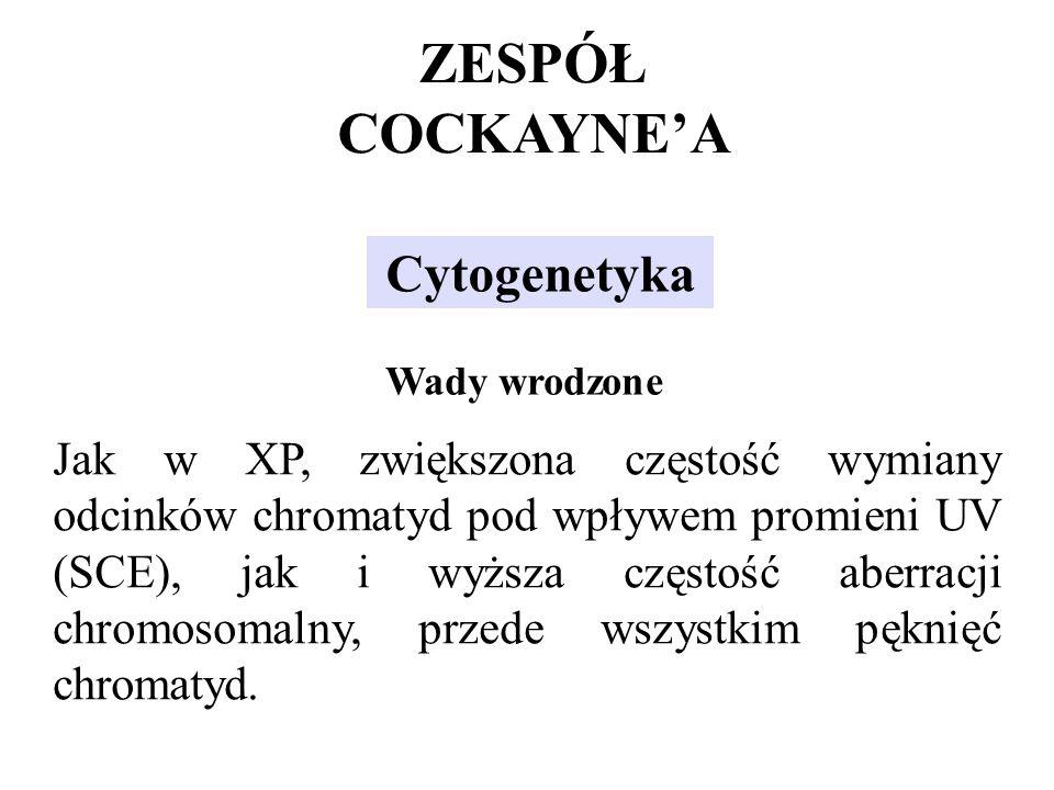 Jak w XP, zwiększona częstość wymiany odcinków chromatyd pod wpływem promieni UV (SCE), jak i wyższa częstość aberracji chromosomalny, przede wszystki