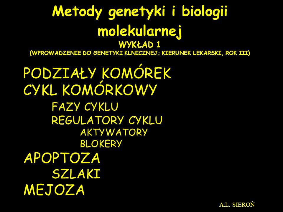 http://pingu.salk.edu/~forsburg/cclecture.html#reg Cyclin levels CDK1 activity Replikacja DNA 2 (4C) Zawartość DNA 1 (2C) Segregacja chromosomów Podział komórki 2 Wielkość Komórki 1 CYKL KOMÓRKOWY