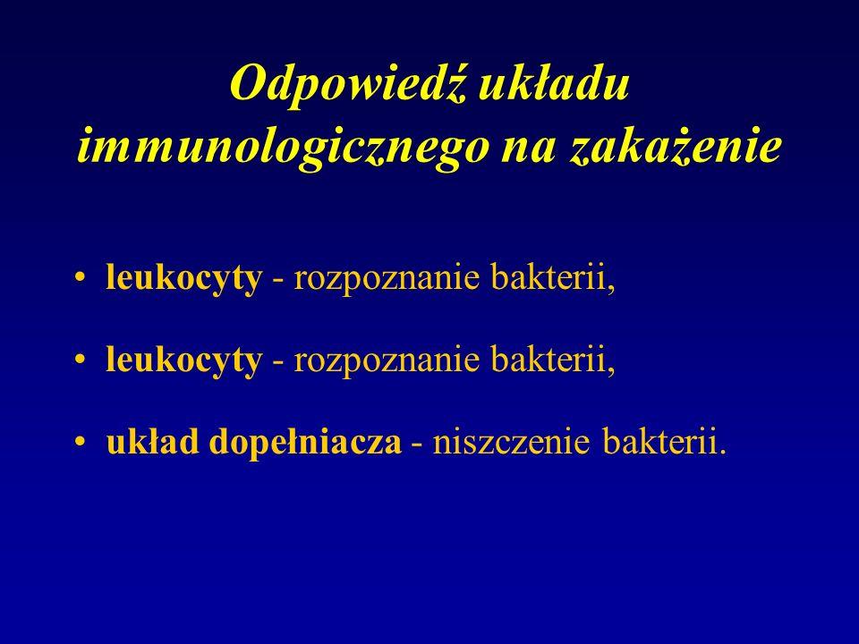 Odpowiedź układu immunologicznego na zakażenie leukocyty - rozpoznanie bakterii, układ dopełniacza - niszczenie bakterii.