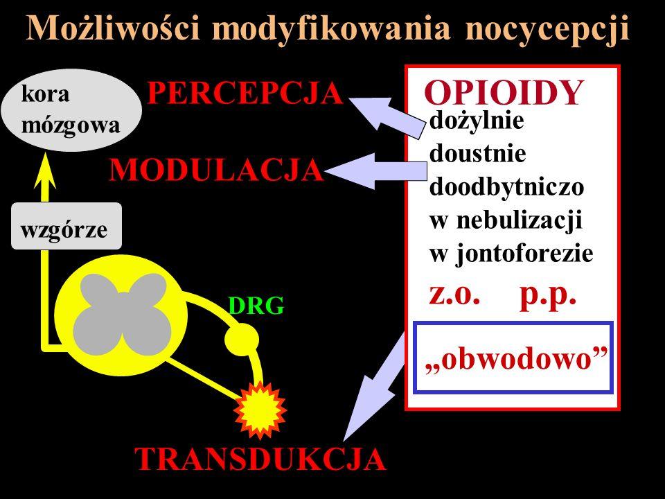 Możliwości modyfikowania nocycepcji TRANSDUKCJA MODULACJA PERCEPCJA WZGÓZE DRG kora mózgowa wzgórze dożylnie doustnie doodbytniczo w nebulizacji w jon