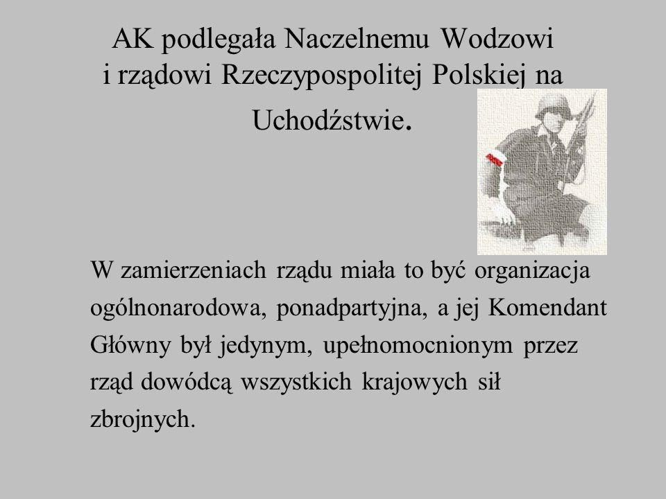 Podstawowym zadaniem AK było prowadzenie walki o odzyskanie niepodległości przez organizowanie i prowadzenie samoobrony oraz przygotowanie armii podziemnej do powstania o powszechnego, które miało wybuchnąć na ziemiach polskich w okresie militarnego załamania Niemiec.