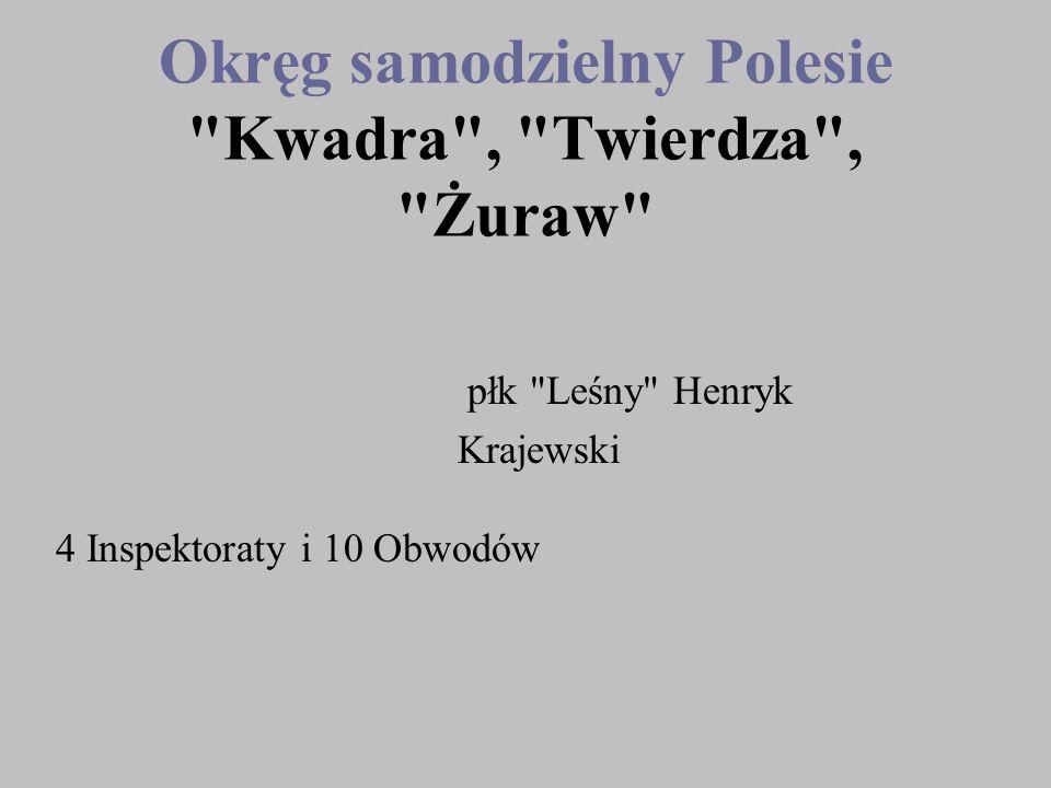 Okręg samodzielny Polesie