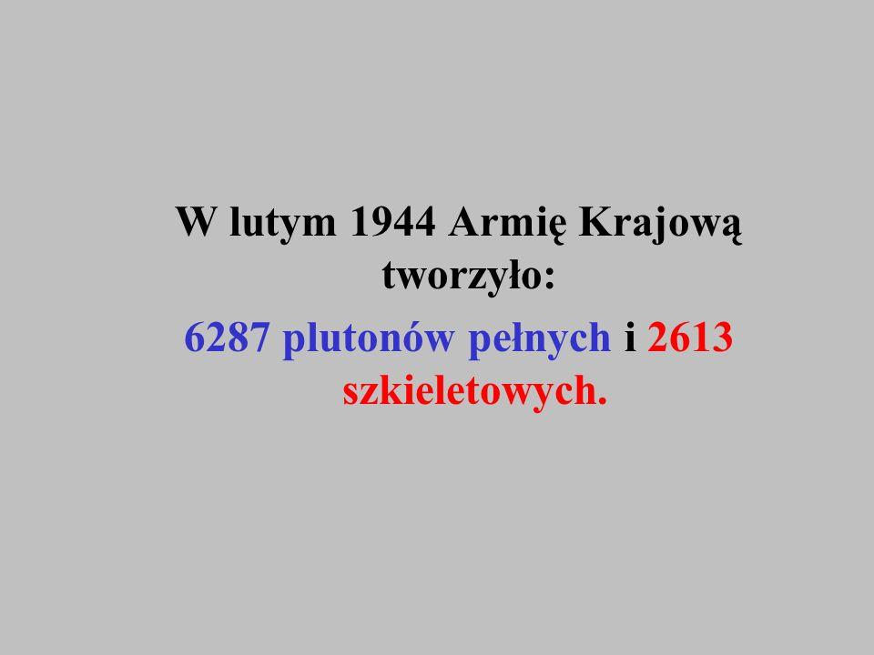 W lutym 1944 Armię Krajową tworzyło: 6287 plutonów pełnych i 2613 szkieletowych.