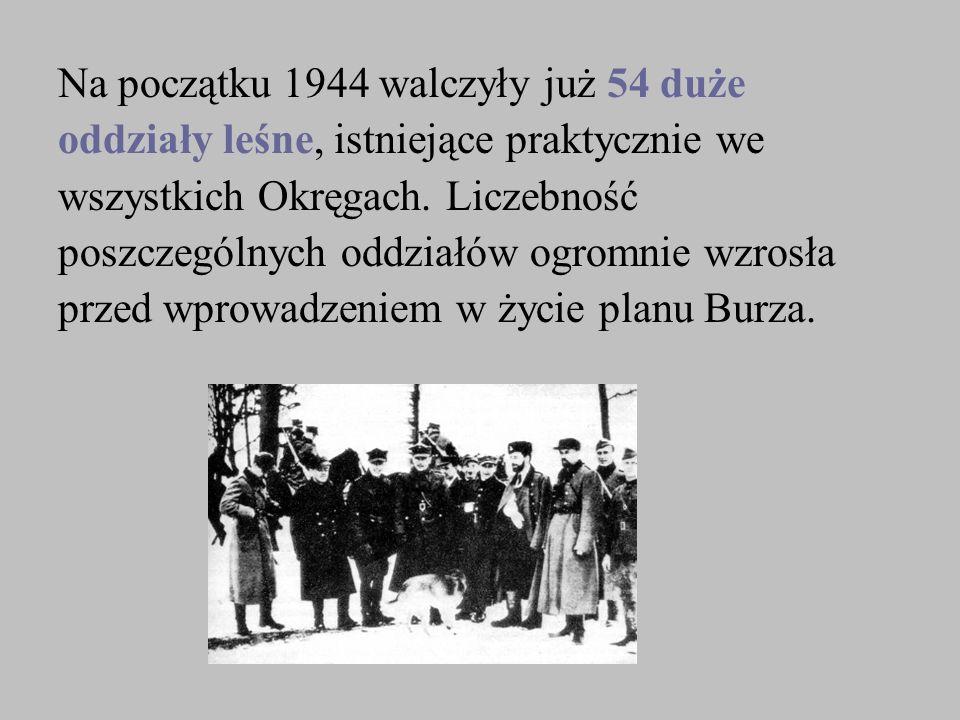 Na początku 1944 walczyły już 54 duże oddziały leśne, istniejące praktycznie we wszystkich Okręgach. Liczebność poszczególnych oddziałów ogromnie wzro