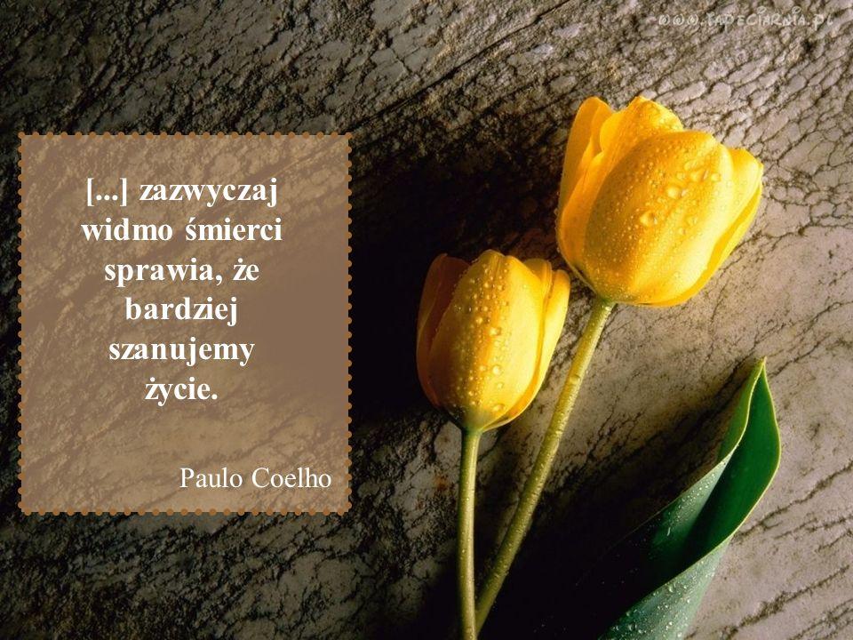 [...] zazwyczaj widmo śmierci sprawia, że bardziej szanujemy życie. Paulo Coelho