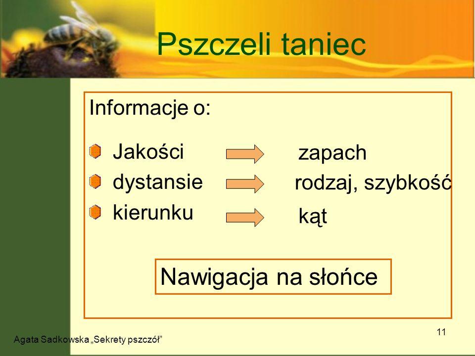 Agata Sadkowska Sekrety pszczół 11 Pszczeli taniec Informacje o: Jakości dystansie kierunku Nawigacja na słońce zapach rodzaj, szybkość kąt