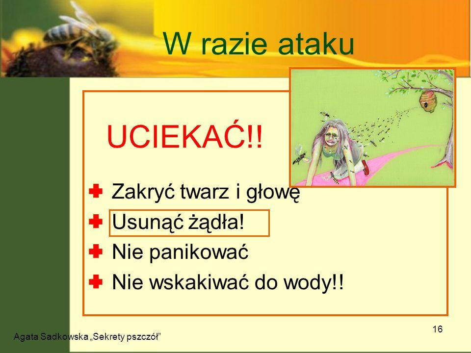 Agata Sadkowska Sekrety pszczół 16 W razie ataku UCIEKAĆ!! Zakryć twarz i głowę Usunąć żądła! Nie panikować Nie wskakiwać do wody!!