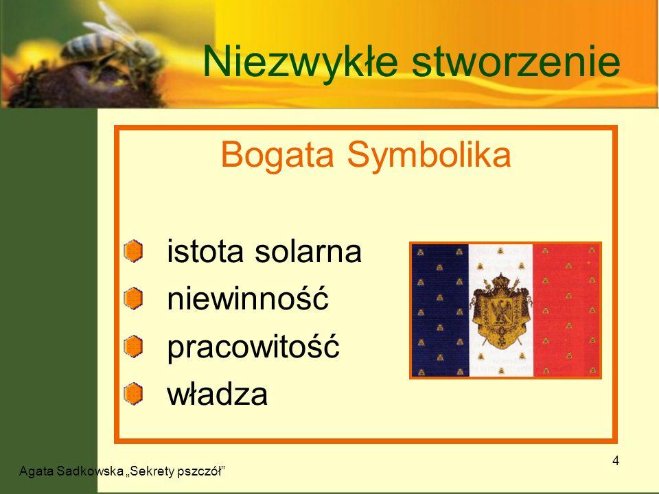 Agata Sadkowska Sekrety pszczół 4 Niezwykłe stworzenie Bogata Symbolika istota solarna niewinność pracowitość władza