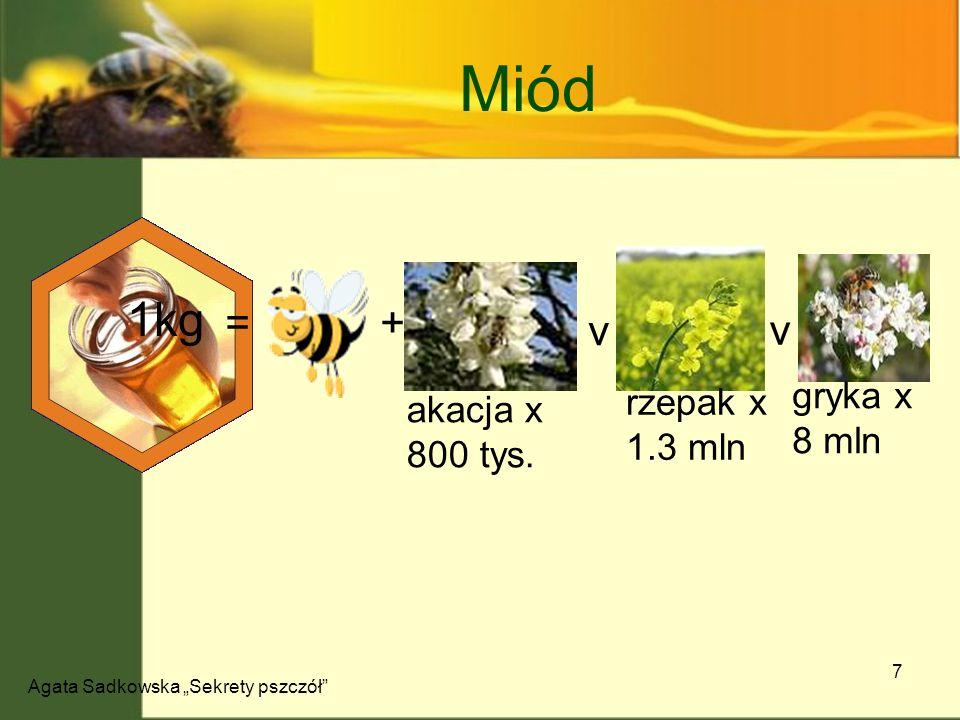 Agata Sadkowska Sekrety pszczół 8 Skład miodu Miód Etapy powstawania Nektar i spadź dojrzewanie zasklepianie 20% słodszy od cukru
