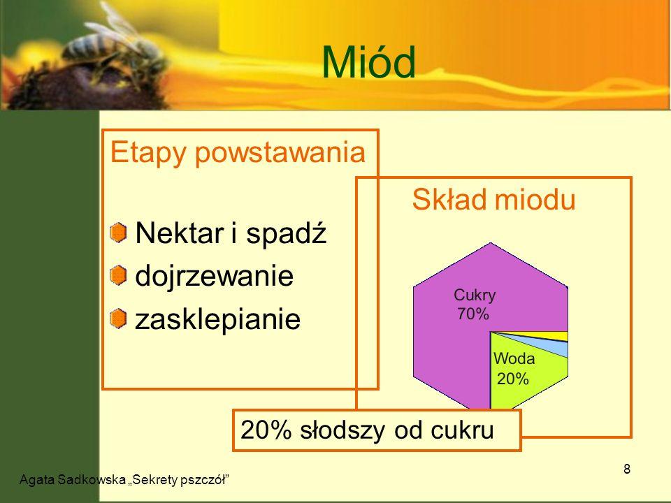 Agata Sadkowska Sekrety pszczół 9 Pszczela Apteka Brak efektów ubocznych Znane od 4tys.