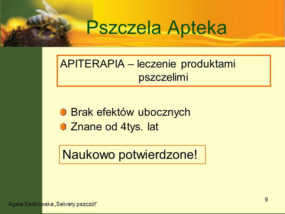 Agata Sadkowska Sekrety pszczół 10 Pszczela Apteka produktwłaściwości miódUkład krwionośny, nerwowy, pokarmowy, oddechowy Pyłek Pierzga Antybakteryjne, ożywcze, regenerujące, odtruwające propolisNiszczenie bakterii, grzybów, wirusów, pierwotniaków JadLeczenie reumatyzmu, jamy ustnej, alergii, serca MleczkoMetabolizm, układ kostny, dermatologia, układ nerwowy woskOchrona jamy ustnej, łatwo wchłaniany przez skórę