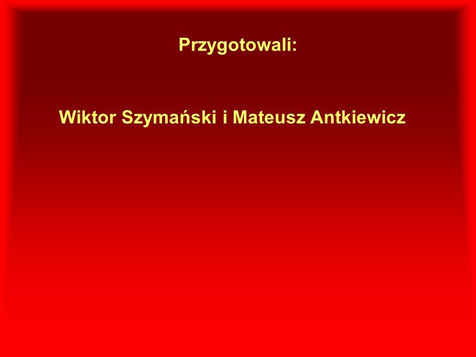Przygotowali: Wiktor Szymański i Mateusz Antkiewicz
