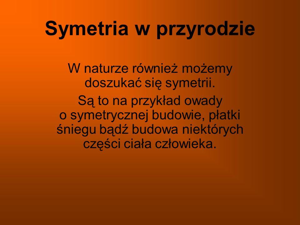 Symetria w przyrodzie W naturze również możemy doszukać się symetrii. Są to na przykład owady o symetrycznej budowie, płatki śniegu bądź budowa niektó