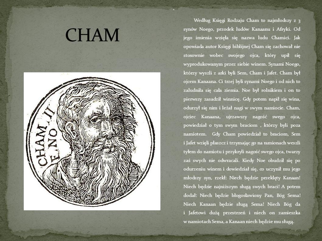 Według Księgi Rodzaju Cham to najmłodszy z 3 synów Noego, przodek ludów Kanaanu i Afryki.