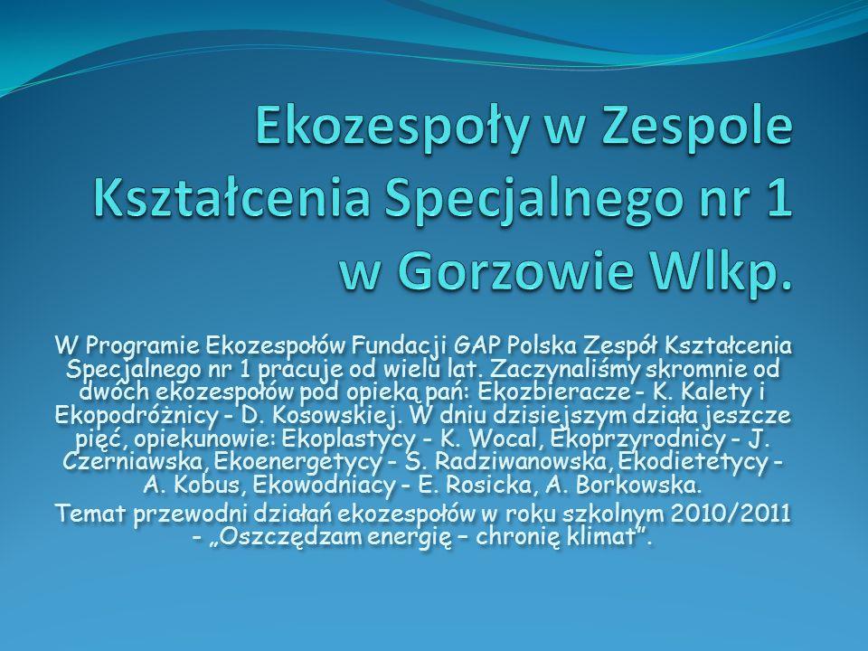 W Programie Ekozespołów Fundacji GAP Polska Zespół Kształcenia Specjalnego nr 1 pracuje od wielu lat. Zaczynaliśmy skromnie od dwóch ekozespołów pod o
