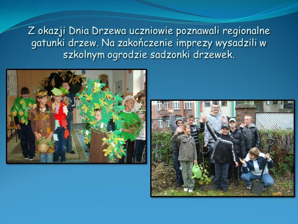 Z okazji Dnia Drzewa uczniowie poznawali regionalne gatunki drzew. Na zakończenie imprezy wysadzili w szkolnym ogrodzie sadzonki drzewek.