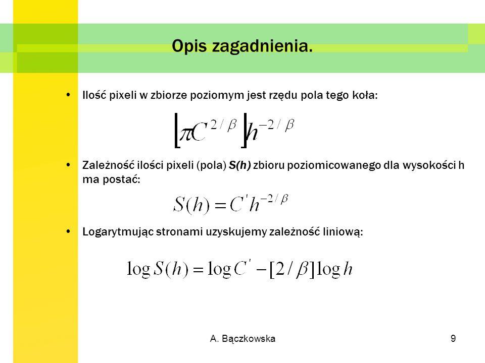 A.Bączkowska10 Opis zagadnienia.
