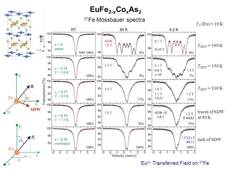 EuFe 2-x Co x As 2 57 Fe Mössbauer spectra T SDW = 190 K T SDW = 150 K T SDW = 100 K traces of SDW at 80 K lack of SDW T N (Eu) = 19 K Eu 2+ Transferr