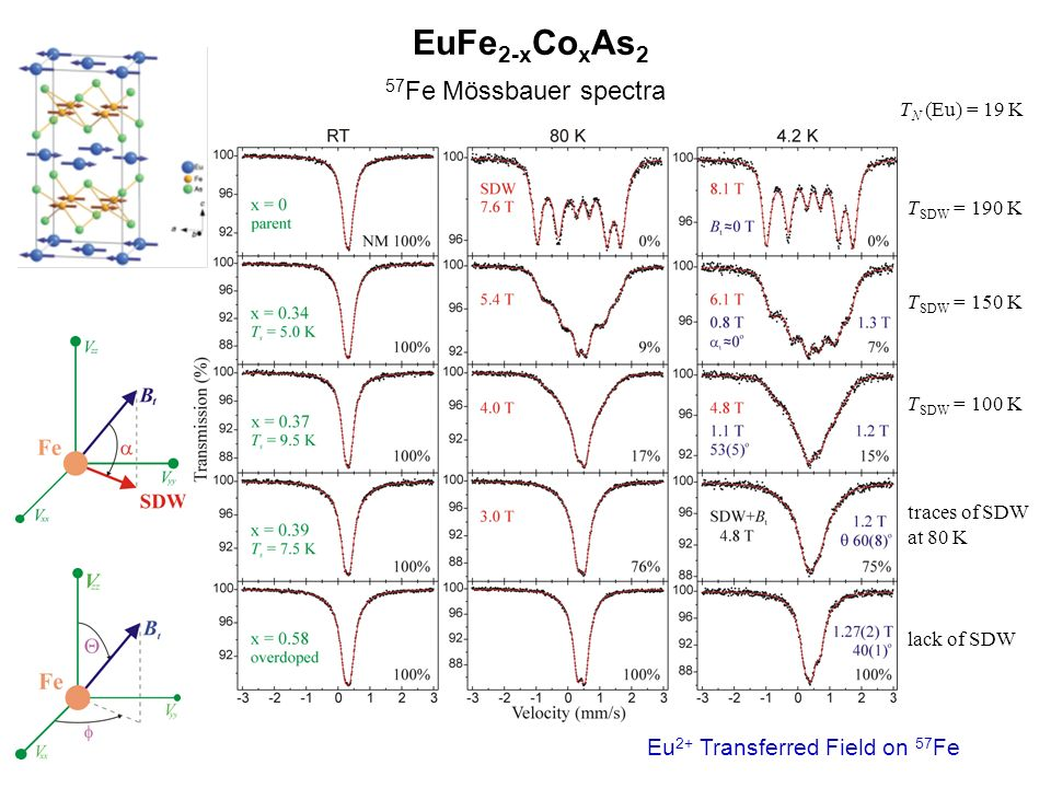 EuFe 2-x Co x As 2 57 Fe Mössbauer spectra T SDW = 190 K T SDW = 150 K T SDW = 100 K traces of SDW at 80 K lack of SDW T N (Eu) = 19 K Eu 2+ Transferred Field on 57 Fe