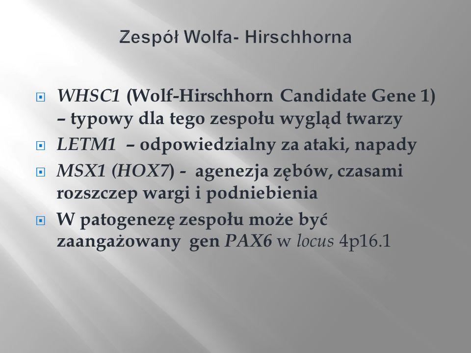 WHSC1 (Wolf-Hirschhorn Candidate Gene 1) – typowy dla tego zespołu wygląd twarzy LETM1 – odpowiedzialny za ataki, napady MSX1 (HOX7 ) - agenezja zębów