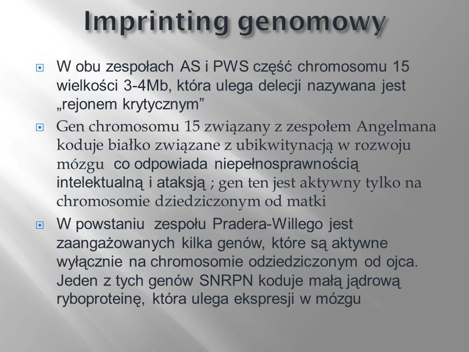 W obu zespołach AS i PWS część chromosomu 15 wielkości 3-4Mb, która ulega delecji nazywana jest rejonem krytycznym Gen chromosomu 15 związany z zespoł