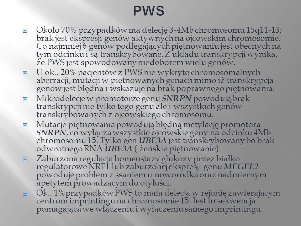 Około 70% przypadków ma delecję 3-4Mb chromosomu 15q11-13; brak jest ekspresji genów aktywnych na ojcowskim chromosomie. Co najmniej 6 genów podlegają