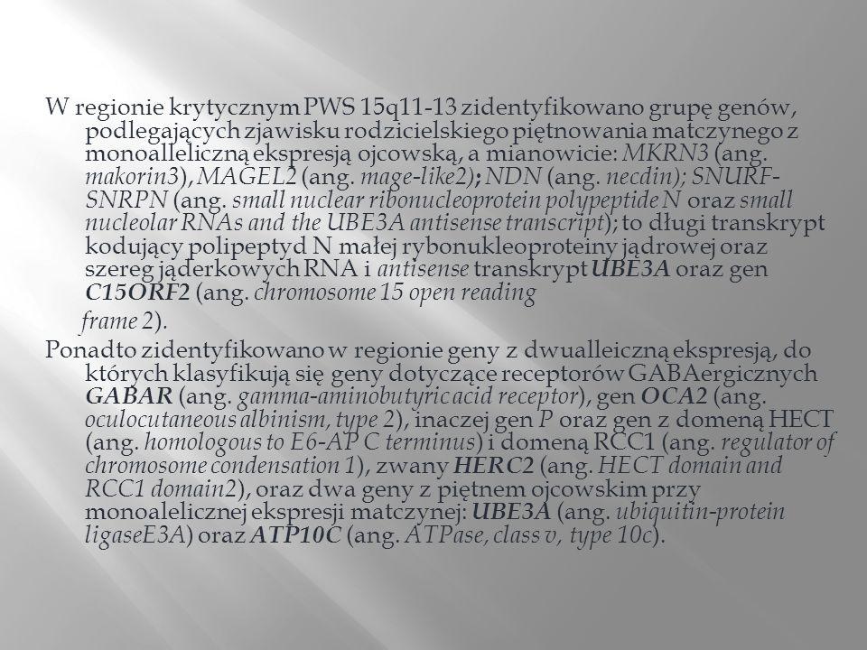 W regionie krytycznym PWS 15q11-13 zidentyfikowano grupę genów, podlegających zjawisku rodzicielskiego piętnowania matczynego z monoalleliczną ekspres