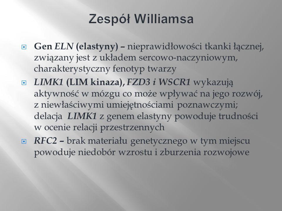 Gen ELN (elastyny) – nieprawidłowości tkanki łącznej, związany jest z układem sercowo-naczyniowym, charakterystyczny fenotyp twarzy LIMK1 (LIM kinaza)