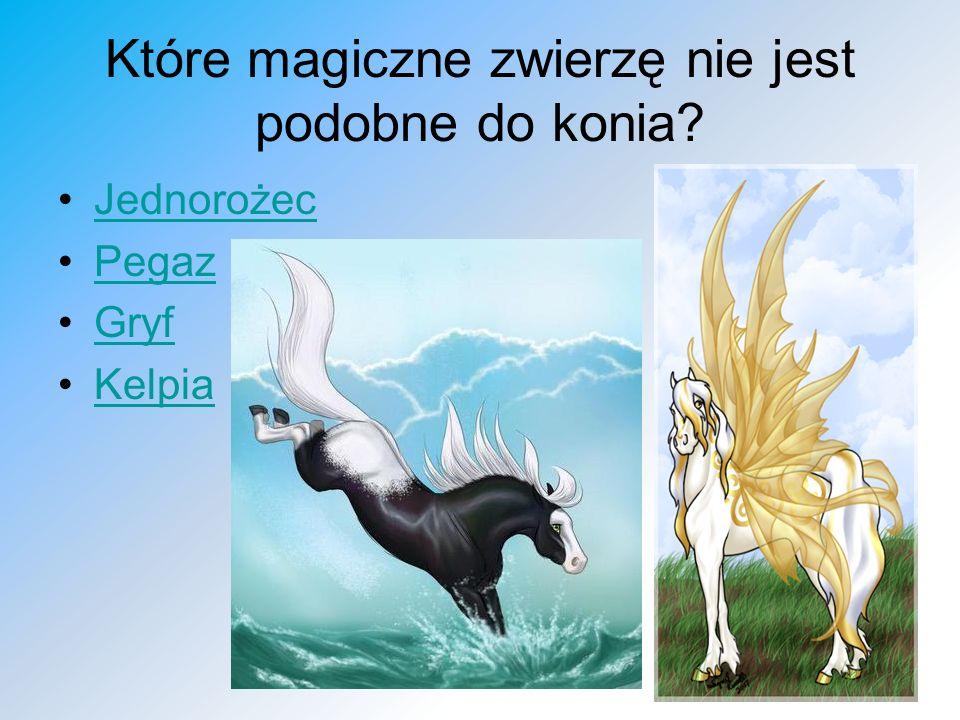 Które magiczne zwierzę nie jest podobne do konia? Jednorożec Pegaz Gryf Kelpia